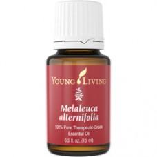 100% Pure Melaleuca Alternifolia Oil -Tea Tree - Therapeutic Grade